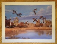 Ducks Unlimited Wood Ducks Duck Print 1996 Doug Berg signed Animals Hunting WI