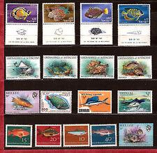 TOUS PAYS Les poissons de Mer et d'Aquarium  E16