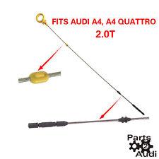 Engine Oil Dipstick Fits Audi A4 A4 Quattro 2.0T 05 - 09 BWT Eng