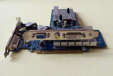 scheda video NVIDIA Geforce 7300SE/7200 PCI-E 256 MB/attacco DVI e VGA