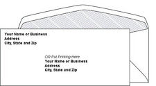 2500 Custom Printed #10 Security Tinted Commercial Envelopes