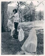 1970 Press Photo Girl Scout Using Dunk Bag Dor Dishes Camp Genesee Colorado