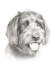 "10 x 8"" Custom Pencil Pet Portrait - any pet drawn from your photos"