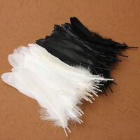"UK 50Pcs Beautiful Large Goose Feathers 6""-8""/15 -20cm High Quality Arts &Crafts"