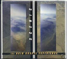 SCENIC Acid Gospel 2001 spacerock psych CD HAROLD BUDD