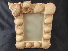 "Picture frame sea shells table top 3"" x 5"" size beach natural nautical art decor"