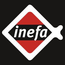 Dachrinne kastenförmig, 200 cm, INEFA -