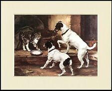 SMOOTH FOX JACK RUSSELL TERRIER DOGS AND CAT DOG PRINT MOUNTED READY TO FRAME