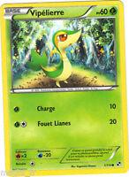 Pokemon  n° 1/114 - VIPELIERRE - PV60