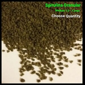 Spirulina Granules 1.2-1.5mm Fish Food Algae Malawi Cichlids Pleco FREE P&P