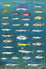 Salt Water Game Fish Poster Print, 24x36
