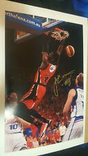 JAMES ENNIS PERTH WILDCATS SIGNED BIG 18 X 12 INCH PHOTO