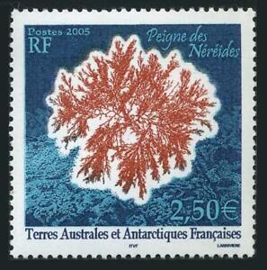 FSAT 351,MNH. Plants 2005. Peigne des Nereides.