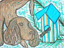 American Water Spaniel Dog 4x6 Art Print