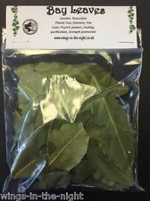 BAY LEAVES Magical Dried Herb ~ Protection/Purification/Healing/Strength ~ Pagan