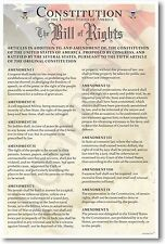 NEW American History Classroom POSTER - The U.S. Constitution - Bill of Rights