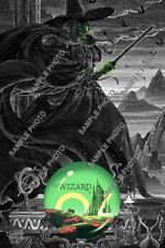 The Wizard of Oz Nicolas Delort Standard Edition Poster Print ($9.95 - $49.95)