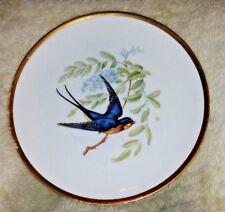 "VINTAGE HUTSCHENREUTHER 8"" AUDUBON BARN SWALLOW BIRD PLATE BAVARIA PASCO"