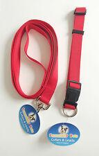Dog Lead and collar – Nylon Adjustable Collar 40-65cm and leash 180cm combo set