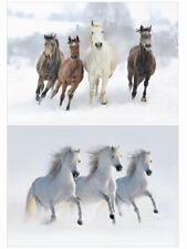 Pack Of 20 Horse Christmas Cards - Pack E