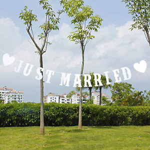 akiero Just Married Banner Bunting, Wedding Party Sign Reception Decoration, Car