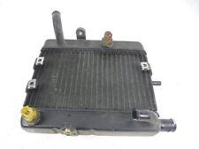 Radiador Yamaha YP Majesty 250 (1999-2006) 5GM124611000 Radiador