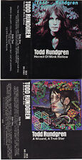 Lot of (2) Todd Rundgren Cassette Tapes: Hermit of Mink Hollow & A Wizard...