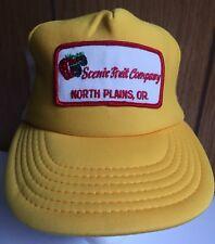 Vintage Trucker Hat Cap Scenic Fruit Co North Plains, OR One Sz Snap Mesh Back