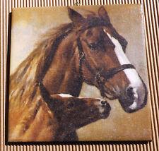 Dekofliese Geburtstag Danke Mitbringsel Geschenkidee Pferd Pferde (055)