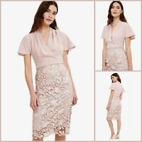 Phase Eight Dress Size 10 |Moriko Lace Style | BNWT | £160 RRP | New!