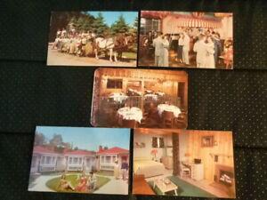 Vintage Lot of 5 1950s Unused Color Postcards Pocono Gardens Lodge Cresco PA