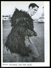 1968 puli dog Great photo vintage print article