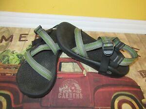 Men's Chaco Z1 Classic Sandal Green/Gray 12