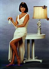 NATALIE WOOD SEX AND THE SINGLE GIRL (1964) LEGGY GLAMOUR PHOTO