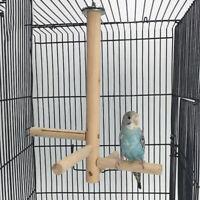 Bird Perch StickBird Natural Wood Stand Parrot Birdcage Stand Natural Toy