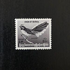 Burma (1964) Burmese Birds Stamp - Rhipidura aureola 1Pya MNH