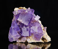 Purple zoned Fluorite crystals on matrix from Berbes - Spain