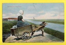 cpa NEDERLAND Walchersche Hondenkar zuivelfabriek ATTELAGE de Chien DOG CART