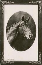 Teddy Howcroft. College Farm,  Gubblecote, Tring 1912 - 'Jack'  qq976