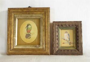 TWO ANTIQUE 19TH CENTURY INDIAN MINIATURE PAINTINGS OF BIRDS