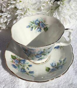 """ROYAL ALBERT DUO """"BLUE BELLS"""" DESIGN VINTAGE LOVELY FOR  HIGH TEA CRAZY TEA SET"""