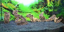 Small Mopani X 2 for Aquarium Vivarium Aquascaping Bogwood