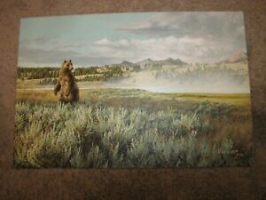 """GREG BEECHAM Original Oil Painting Canvas 20""""x30"""" Signed Grizzly Bear"""
