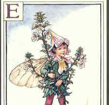 "Fairy Alphabet ""E"" Eyebright Boy,Cmb,Barker Postcard"