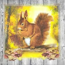 3x Single Paper Napkins For Decoupage Craft Tissue Autumn Squirrel Yellow N044