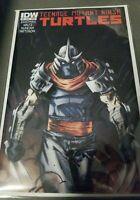 Teenage Mutant Ninja Turtles IDW #10 Shredder Cover A