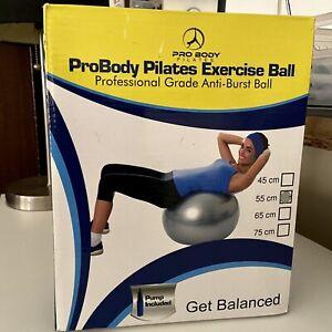 ProBody Exercise Ball - Professional Grade Anti-Burst Balance Ball- Gray - Open