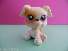 petshop chien boxer blanc / white dog N° 84