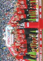 Cardiff City Championship Winners 2013 POSTER