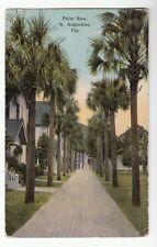 [50817] 1914 Postcard Palm Row in St. Augustine, Florida